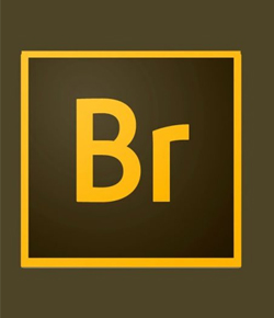 Curso adobe bridge